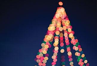 holidaylights.jpg