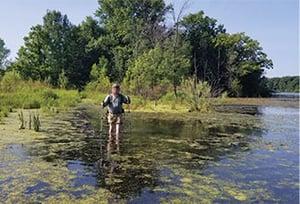 HagensHikes_Swamp